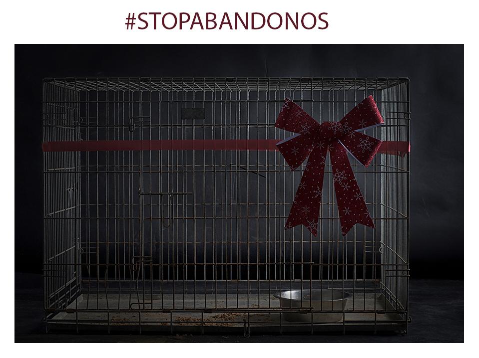 #stopabandonos